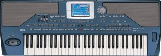 Korg Pa800 61-Key Arranger Keyboard
