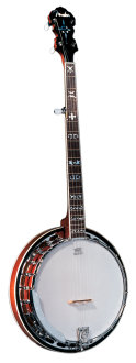 Fender FB55 FB Series Banjo