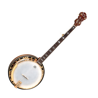 Fender FB-59 Banjo with Case