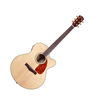 Fender CJ-290SCE Jumbo Maple Acoustic