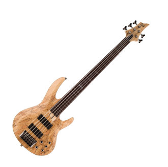 ESP LTD B205 Fretless Electric Bass