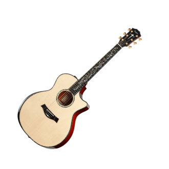 Taylor PS14CE Presentation Acoustic