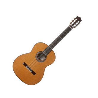 Cordoba C10 CD/IN Nylon Acoustic Guitar