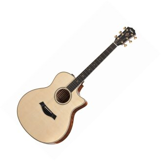 Taylor GSCE 2012 Fall LTD ED Acoustic